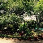 Meyer Baba's Ashram-Amendaghar